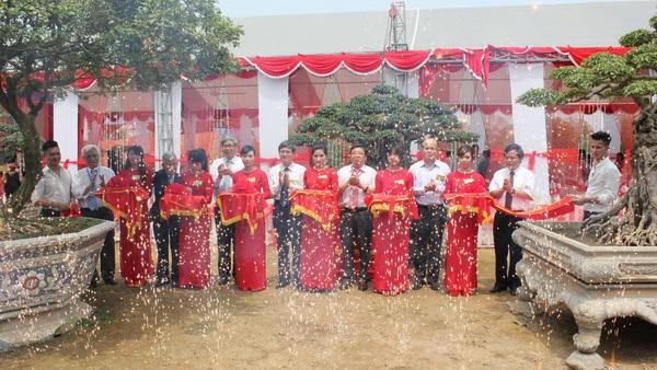 9 cây ở TP Việt Trì, Phú Thọ được công nhận là Cây Di sản Việt Nam (Ảnh: MONRE).