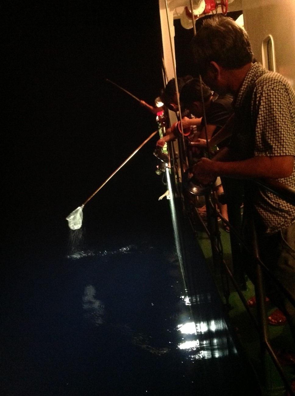 Sau bữa ăn tối nhiều đại biểu lại mạn tàu thả cần câu.