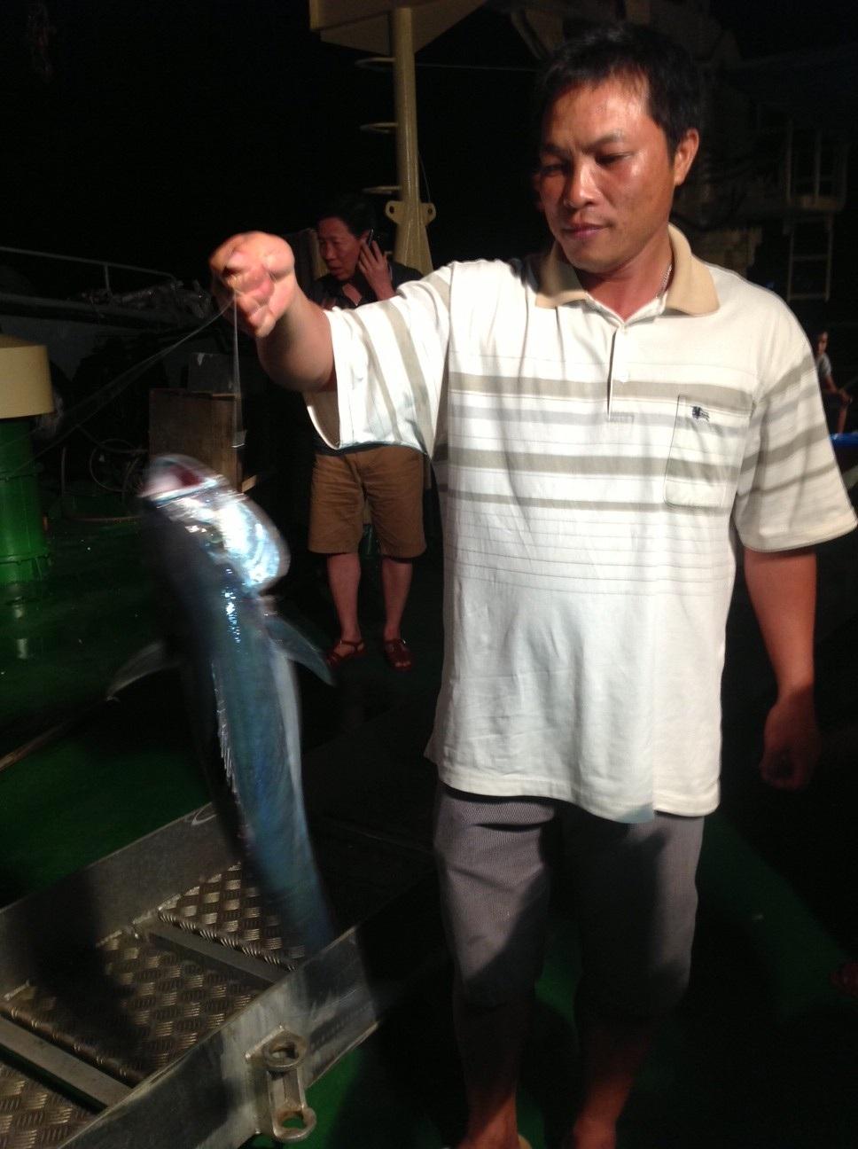 Chú cá Mú này nặng khoảng 1,5 kg.