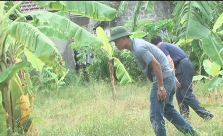 Lực lượng điều tra phá án lật từng gốc cây ngọn cỏ truy tìm dấu vết hung thủ.