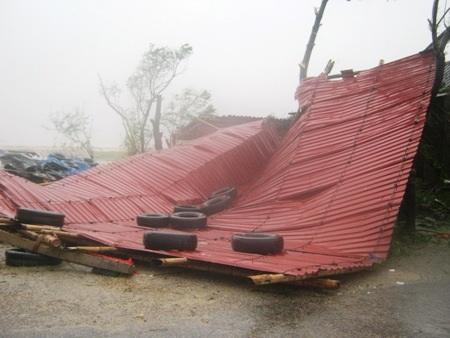 Một mái tôn bị gãy, đổ