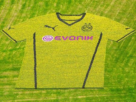 Mẫu áo đấu mới của Dortmund. Năm nay, sẽ không còn chấm bi màu đen như mẫu áo năm vừa qua
