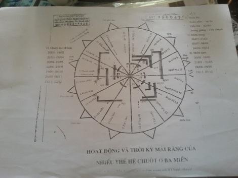 Giáo án giảng dạy của ông Thiều là những sơ đồ vẽ bằng tay như thế này.