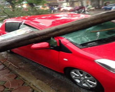 Xe ô tô bị cột điện đổ đè lên gây hư hỏng nặng