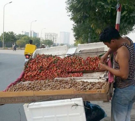 Dâu Đà Lạt được bày bán ở đường phố Hà Nội.