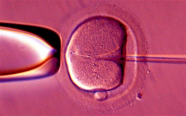 """Người """"cha"""" hiến tinh trùng đã truyền bệnh sang cho những đứa conPhoto: ALAMY"""