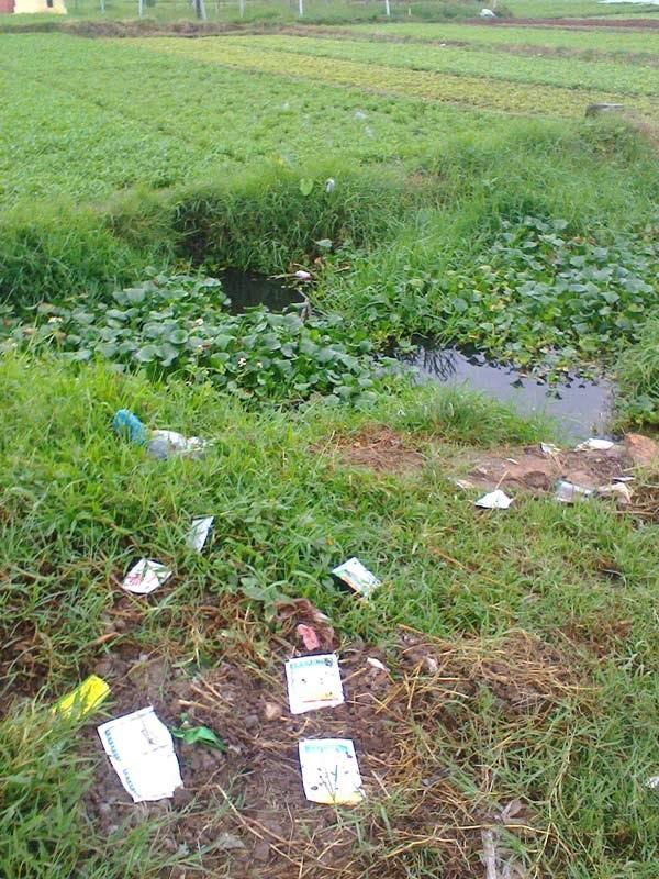 Vỏ thuốc bảo vệ thực vật vương vãi bên những ruộng rau muống. (Ảnh: Đỗ Dung)