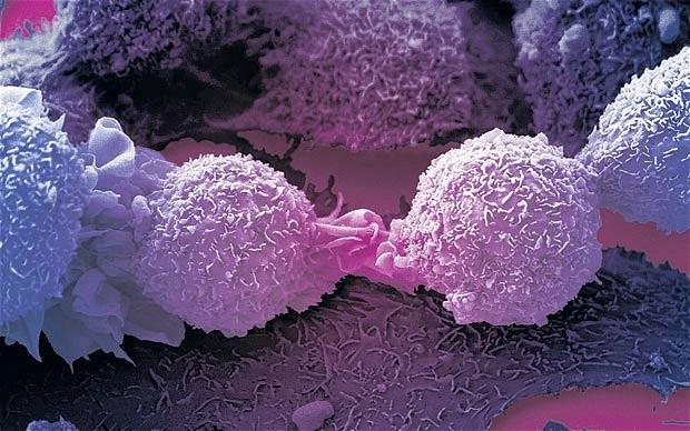 Vi rút biến đổi gen chữa khỏi ung thư da