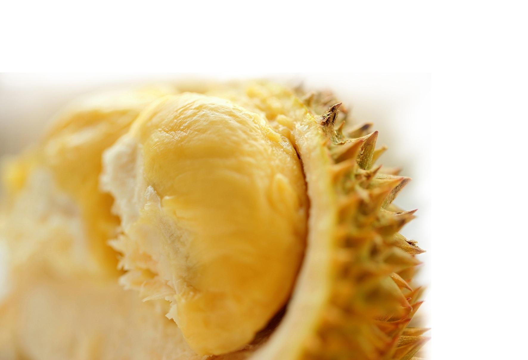 1. Người có cholesterol cao không nên ăn sầu riêng vì nó sẽ làm bệnh nặng thêm?