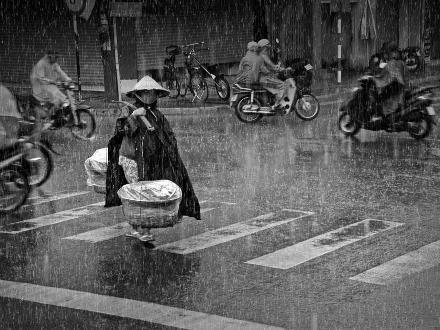 Chiều mưa - Trương Minh Điền