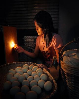 Người bán trứng rong - Danilo Victoriano Jr. (Phi-líp-pin)