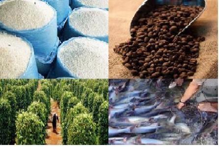 Đầu tư cho nông nghiệp vẫn chưa xứng tầm (Ảnh minh họa)