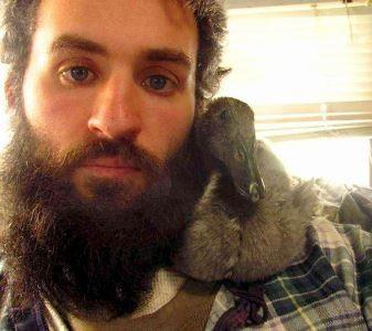 Hiện nay Peeps đã 10 tuần tuổi và quá lớn nên không thể tiếp tục ngủ trong râu của Brian