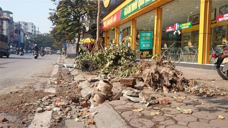 Trụ nước, cột đèn, cây xanh đều là nạn nhân của vụ tai nạn