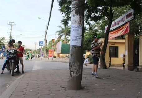 Cột điện nguy hiểm này ở ngay cổng Trường Tiểu học Đại Kim