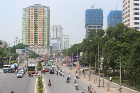 Hai hàng cọc khô đừng bên đường Nguyễn Chí Thanh