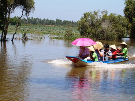 Dịch vụ đưa khách tham quan ruộng sen mùa nước nổi bằng vỏ lãi, giá 10.000 đ/lượt.