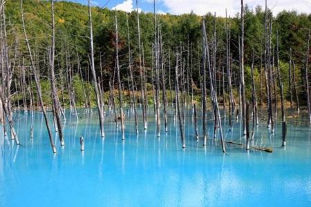 Chiêm ngưỡng ao nước xanh tuyệt đẹp ở xứ sở Mặt trời mọc