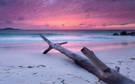 9. Seychelles