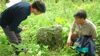 Phiến đá cổ trước đền thờ Thần Rừng và vua Gia Long của người La Chí