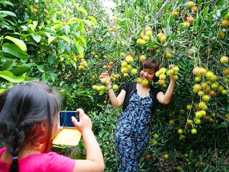 Được khám phá vườn trái chín Lái Thiêu là điều vô cùng thú vị cho hành trình du ngoạn của bạn