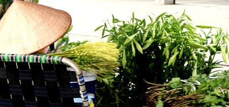 Chỉ ở Hà Nội mới có những gánh hàng hoa trần gian như thế
