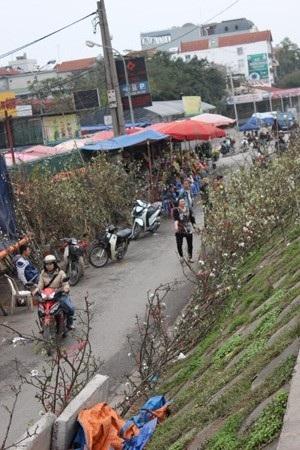 Những cành hoa lê được bày bán trên chợ hoa Quảng Bá nở rộ trắng muốt một góc chợ