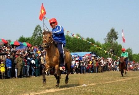 Đua ngựa ở Phú Yên
