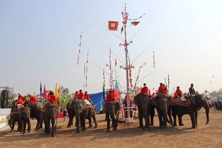 18 chú voi hào hùng chuẩn bị bước vào trận đấu