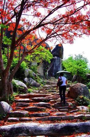 Những ngôi chùa nổi tiếng linh thiêng ở Bình Định