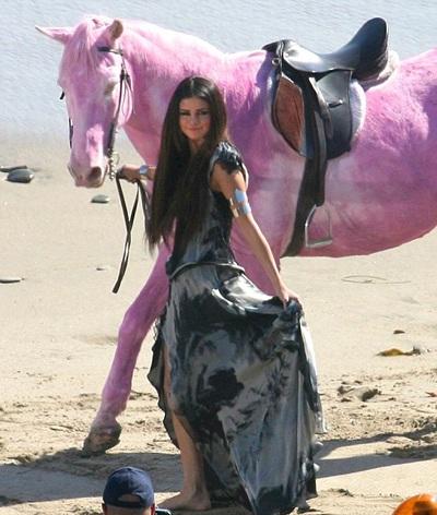 """Pink chỉ trích """"đàn em"""" Selena Gomez  - 2"""