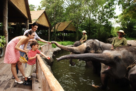 Vườn thú Singapore, điểm đến thú vị của các gia đình vào dịp cuối tuần.