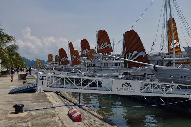 Paradise Cruises có cầu cảng riêng, đảm bảo sự thuận tiện và an toàn cho du khách
