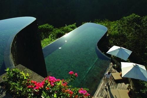 Bể bơi thuộc vườn treo Ubud nhìn thẳng ra cánh rừng nhiệt đới
