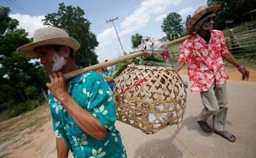 Người dân làng Nakhon Ratchasim đưa mèo đi cầu mưa.