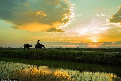 Khung cảnh làng quê Việt rất đỗi thân thương dưới ống kính nhiếp ảnh gia người Pháp.
