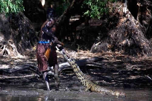 Các thợ săn dùng súng khi cần thiết và bắt cá sấu bằng tay.
