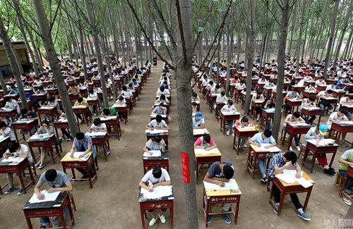Toàn cảnh không gian thi của hơn 800 học sinh.