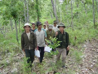 Việt Nam thu 1.200 tỷ đồng phí dịch vụ môi trường rừng mỗi năm