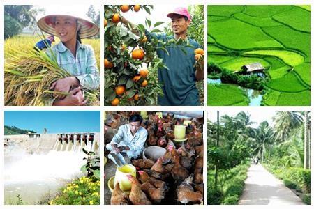 Doanh nghiệp đầu tư vào nông nghiệp - nông thôn còn rất hạn chế (Ảnh minh họa)