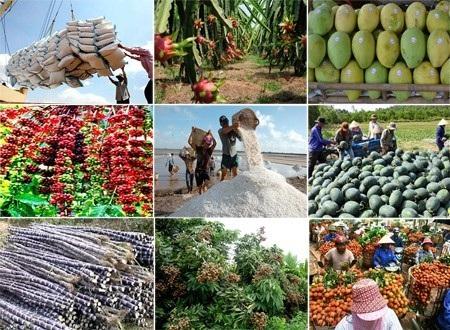 Việt Nam đang nỗ lực đang dạng hóa thị trường xuất khẩu nông sản (Ảnh minh họa)