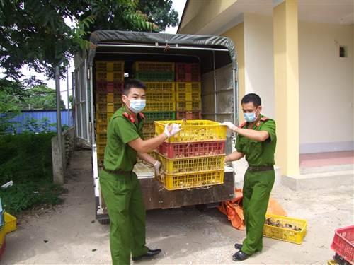 Liên tiếp bắt giữ nhiều vụ vận chuyển hàng nhập lậu