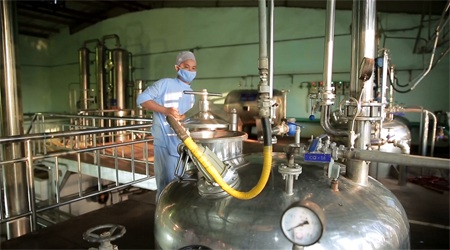 Các thành phần nguyên liệu được đưa vào sản xuất