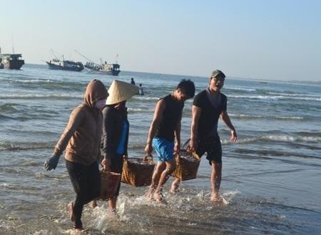 Sau 1 đêm vươn khơi, ngư dân Quảng Ngãi mang về những giỏ cá cơm đầy ắp -sản vật của biển.