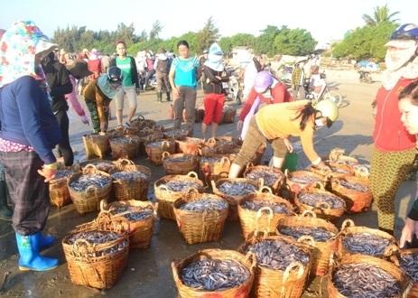 Đầu tháng Giêng, ngư dân phấn khởi vìbội thu cá cơm.