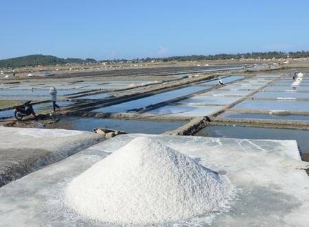 Từng hạt muối chín được đưa lên bờ nhưng người dân không biết bán cho ai.