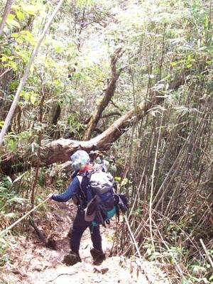 Đường xuống núi ở độ cao 2.800 mét rất khó đi và tiềm ẩn nguy hiểm