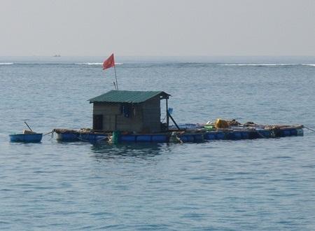 Những lồng bè nuôi tôm được hình thành như thế này giữa đại dương ven vùng biển Lý Sơn