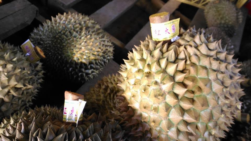 Sầu riêng sau khi được nhúng thuốc được gắn nhãn mác Trung Quốc lên cuống