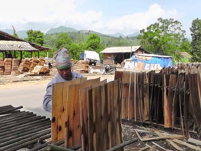 Từ khi chuyển sang làm nghề gỗ ván bóc, gia đình chị Hà lãi 500 triệu đồng/năm.Ảnh: K.D